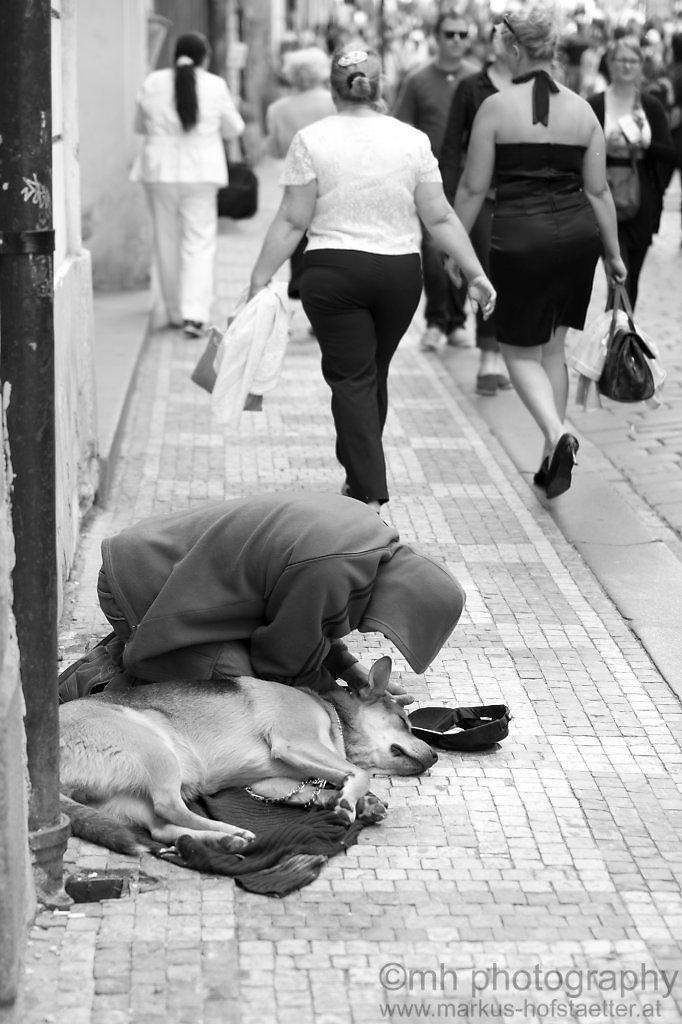 homeless friends forever - prague