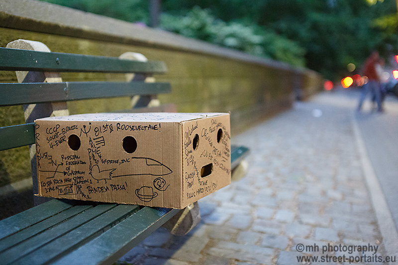 the box - central park nyc