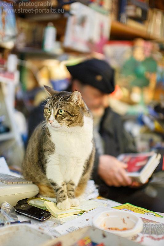 cat of luigi frizzo of libreria acqua alta